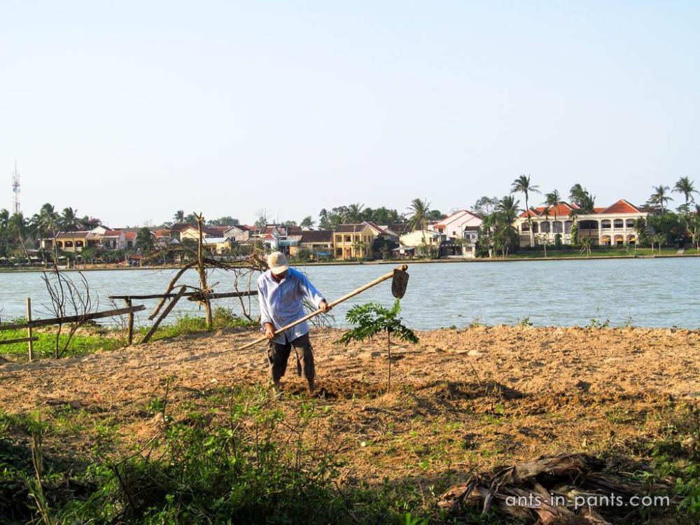 Вьетнамский крестьянин
