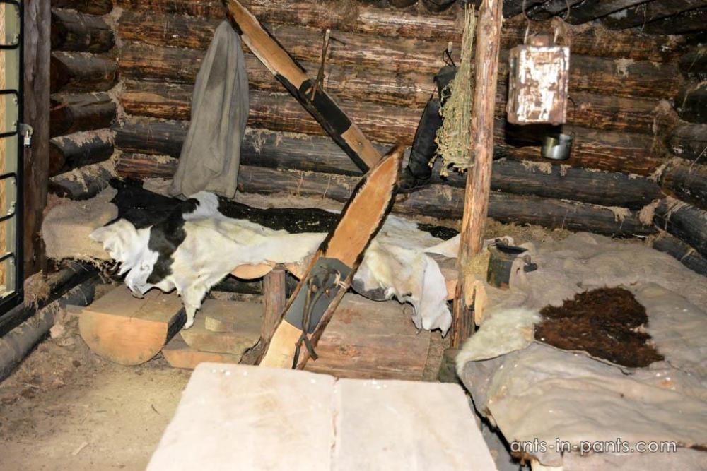 Siberian hunting camp