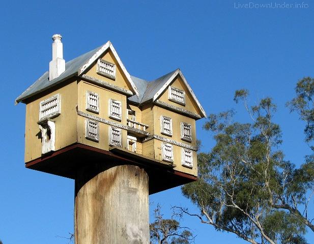 Domek dla papug w parku, Australia