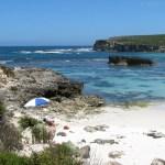 Wyspa Kangura (4). Pożegnanie z wyspą.