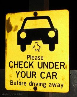Znak: uwaga na pingwiny pod samochodem