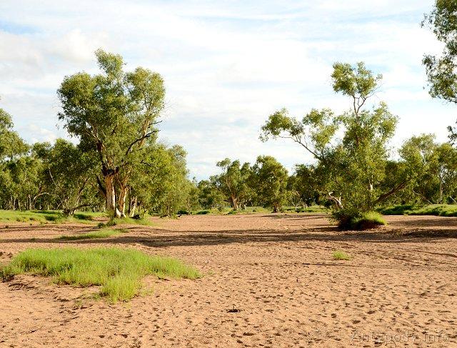Todd River w Alice Springs