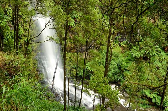 Erskine Falls, Great Ocean Road, Wiktoria, Australia