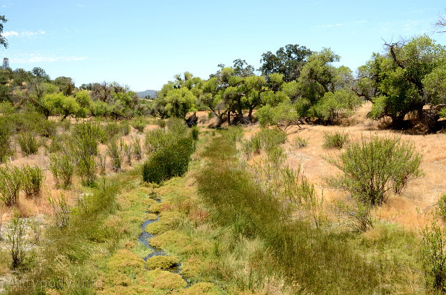 Uskok San Andreas, Parkfield, Kalifornia, USA