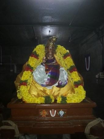 Thiruvallur-Sri-Veeraraghava-Perumal_08