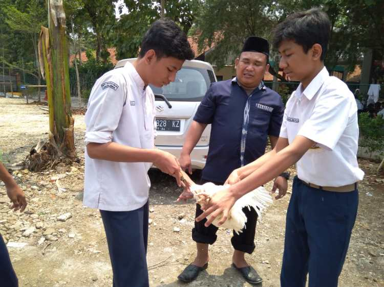 Praktek PAI - Penyembelihan Hewan