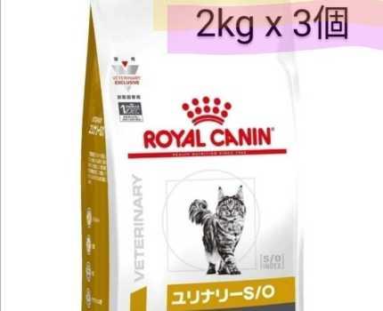 猫 ユリナリーs/oオルファクトリーライト 2kgx3個セット計6kg 尿石 ロイヤルカナン 尿トラブル