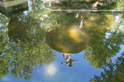 Aranjuez fuente narciso agua reflejo
