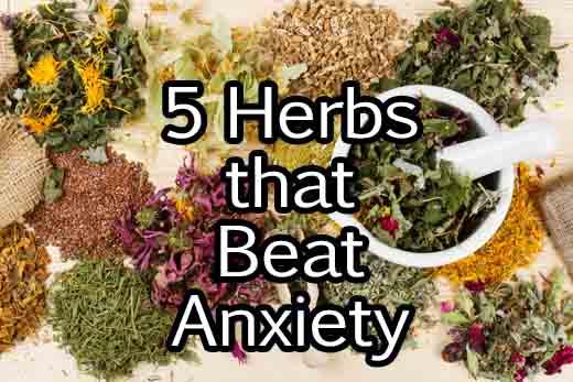 5-anxiety-herbs