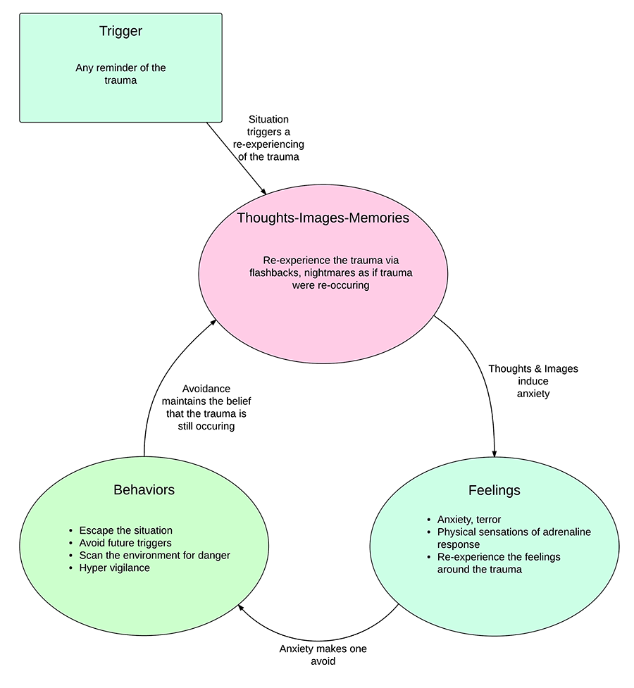 Negative Cycle of PTSD