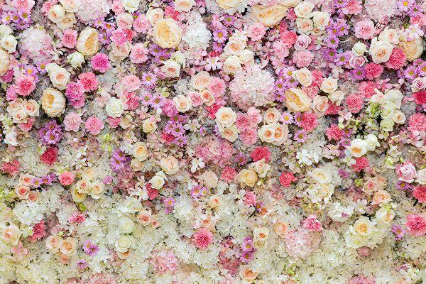 白やピンクの花たち