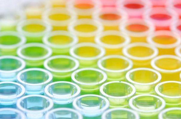 165種類の酵素を配合