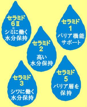 赤ら顔化粧水ULUはヒト型セラミド配合