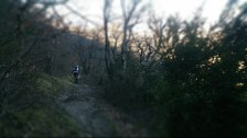 Trying out the tilt shift effect on my phone