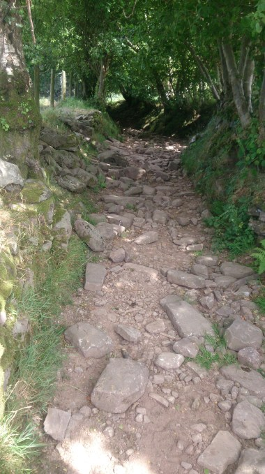 After a rather unentertaining and grassy ridge descent I was treated with the rockiest lane ever!