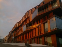 The sun against one of the university accommodation buildings on the way home
