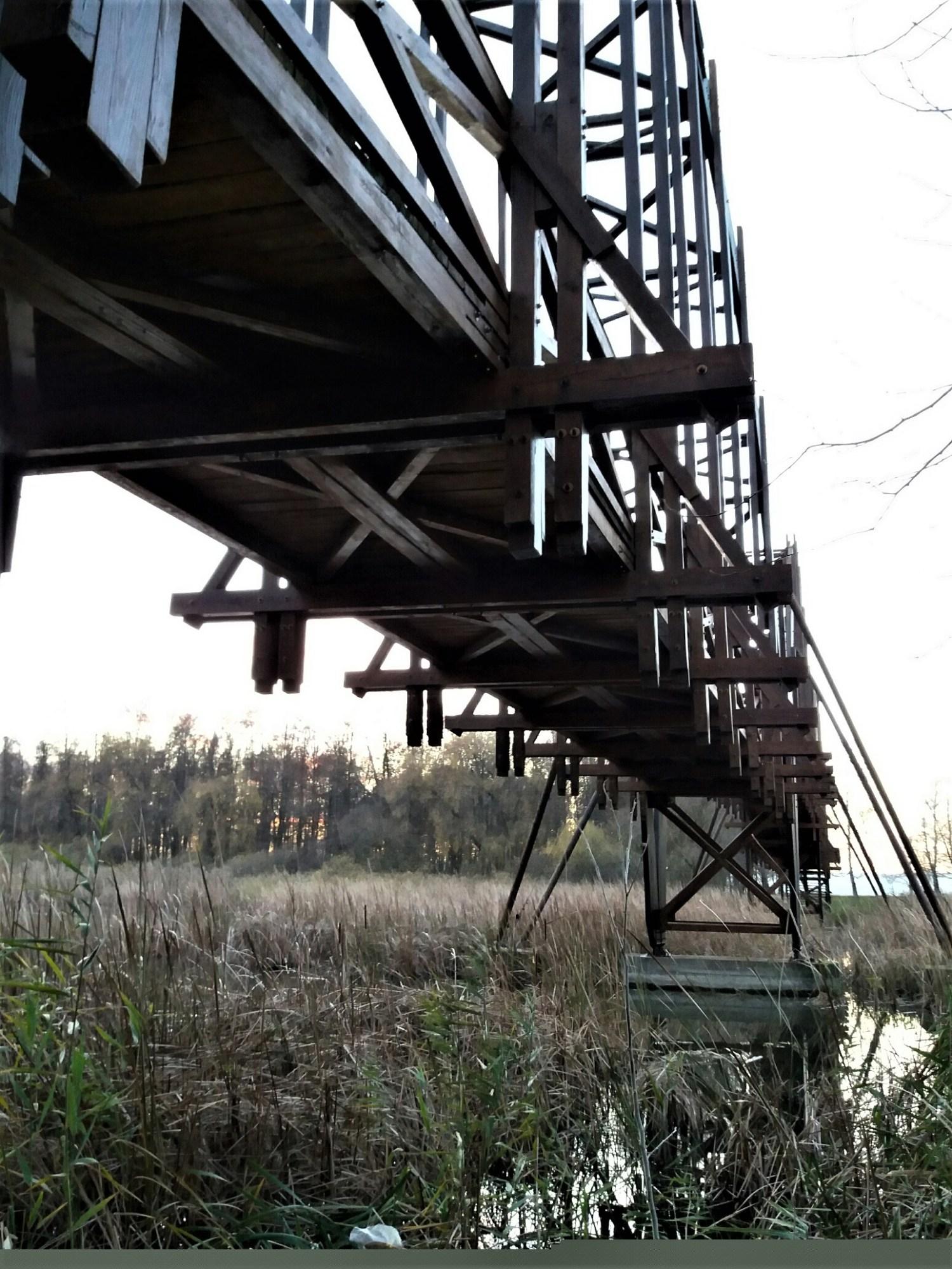 Wooden bridge on Kányvári sziget
