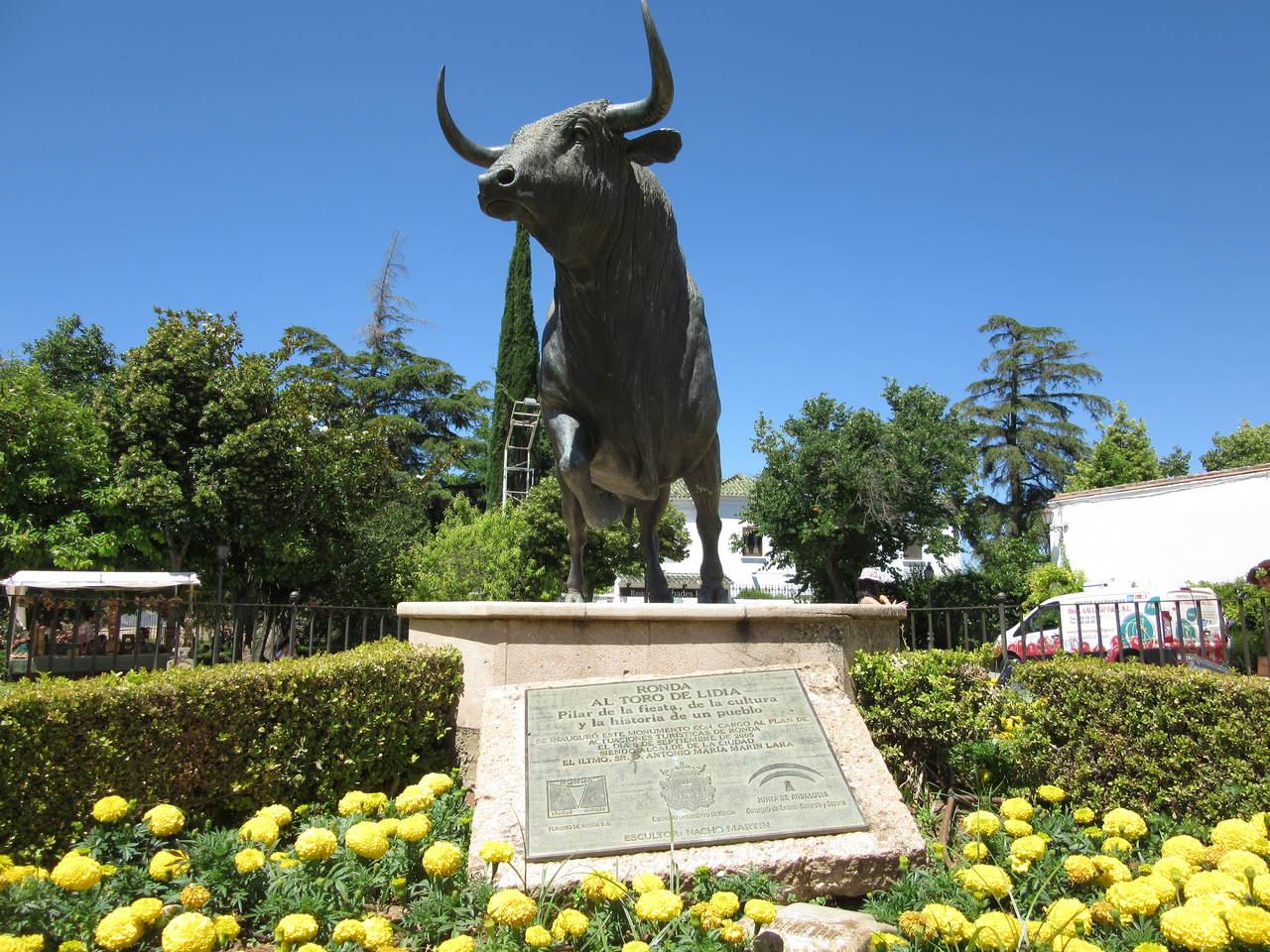 Ronda Bull