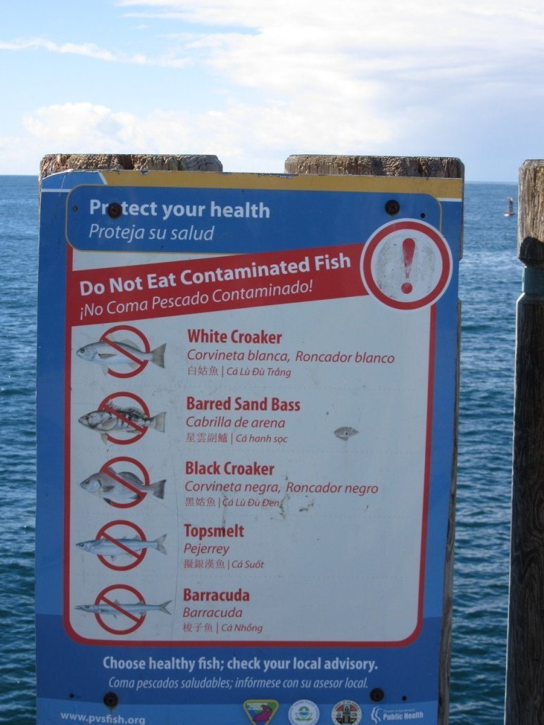 Fish warning at Redondo Pier near Torrance CA