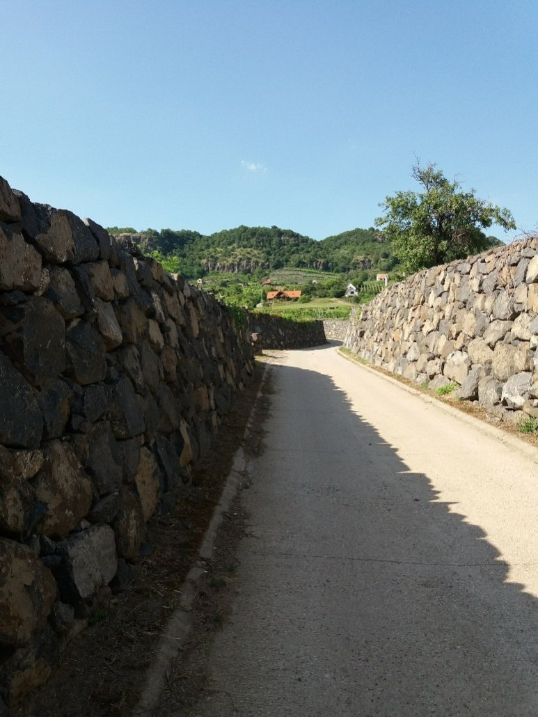 Walled road up through vineyards on Somlóhegy