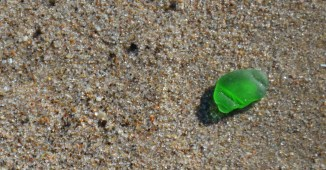 The light was perfectly angled to find beach glass.
