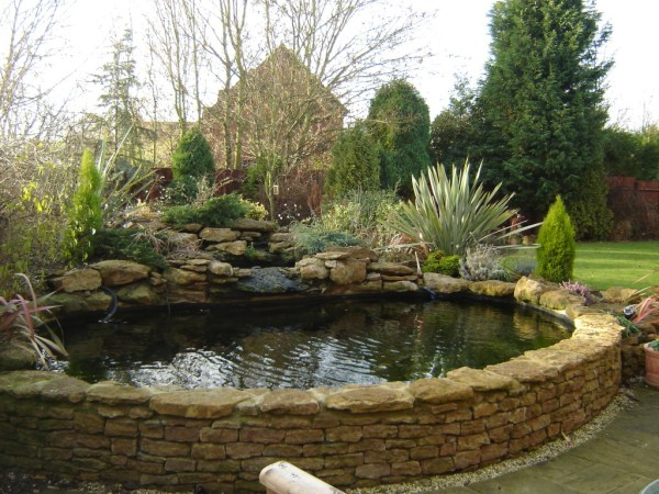 raised koi pond garden Formal or Raised - Pond Package ⋆ Small Fish Ponds