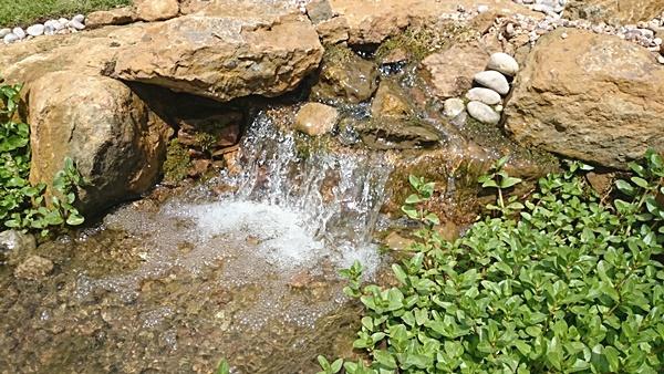 Garden Pond Water Feature Ideas