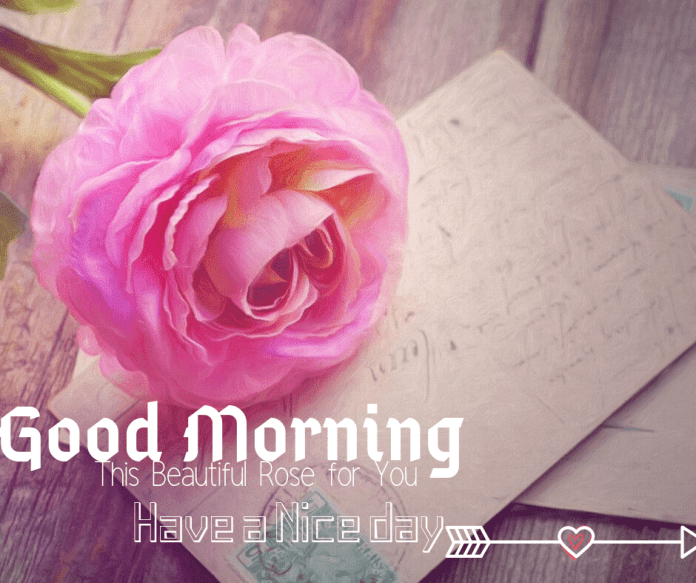 """good morning paragraphs for her,good morning texts for him,""""good morning love messages for girlfriend""""good morning letter,good morning my princes,"""