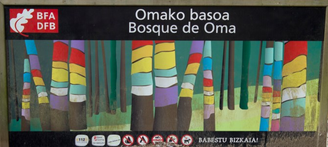 The Painted Forest of Oma
