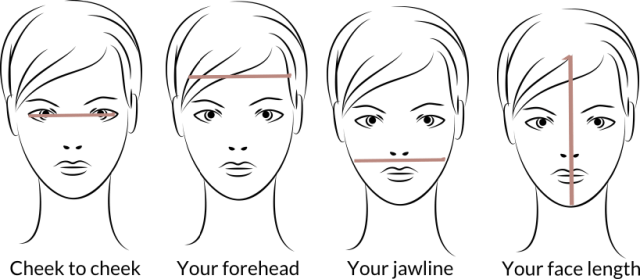 Face shape measurement