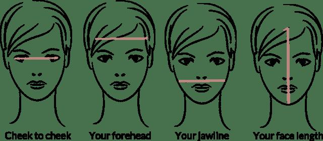 Face shape measurement
