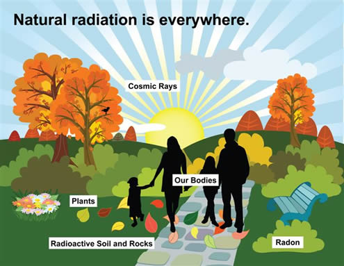 Guess How Much Radiation You Are Exposed To Daily?