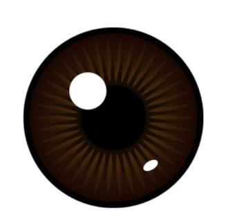 The Dark Brown Eyed Mister