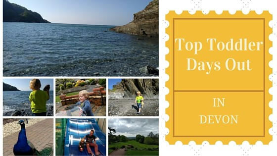 Top Toddler Days Out in Devon