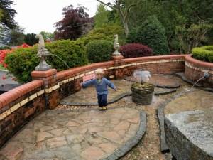 Mystical Water Gardens