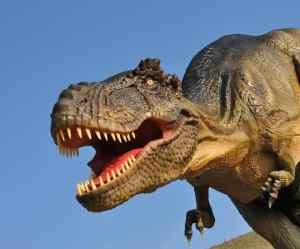 Summer Kids' Club #4 Dinosaurs, 16-17 Aug 17