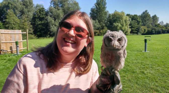 Flying Owls at Lavenham Falconry