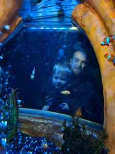 Sea life centre gt yarmouth