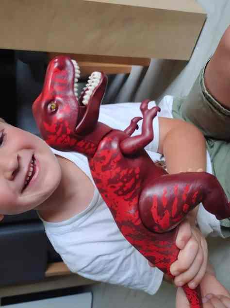 Playmobil Dinos T-Rex