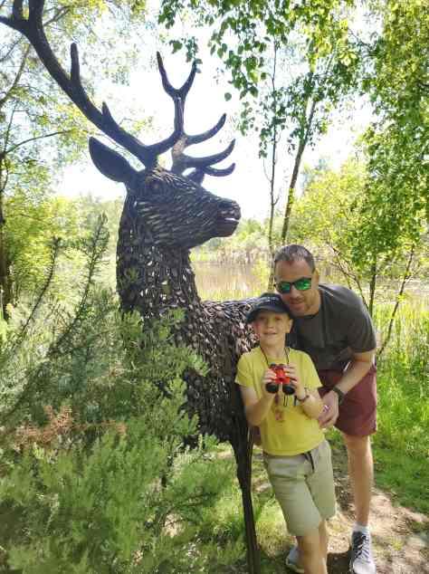 Marvelous stag sculpture