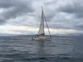 Natural Magic in Cook Strait
