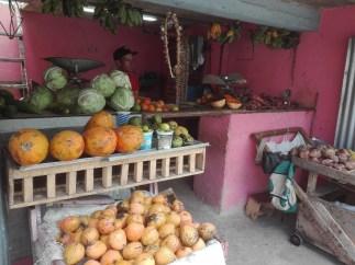 Kubáról Mezőfényen (141)