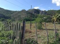 Kubáról Mezőfényen (18)