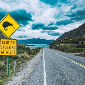 Kiwi crossing sign New Zealand