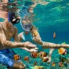 Reef snorkelling