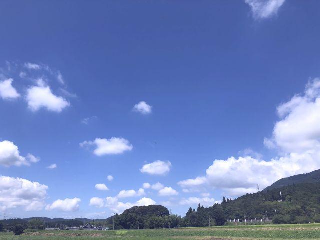 青い空と緑の田んぼ