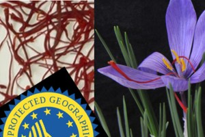 Saffron, Crocus sativus and origin label