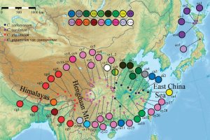 Map of the sampling locations and the geographical distribution of cpDNA haplotypes detected in Cardiocrinum