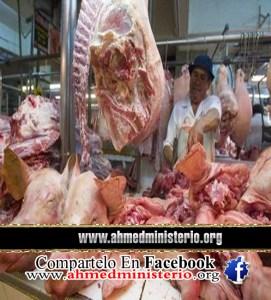 carne-cerdo-leviticos-11-salud-regimen-veguetariano