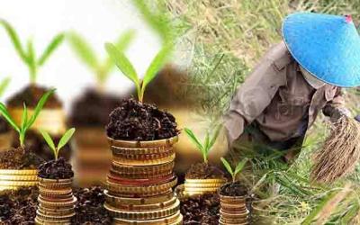 Mendorong Anak Muda Terjun Ke Dunia Pertania